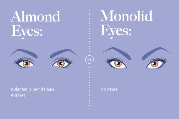 monolid-eye-shape