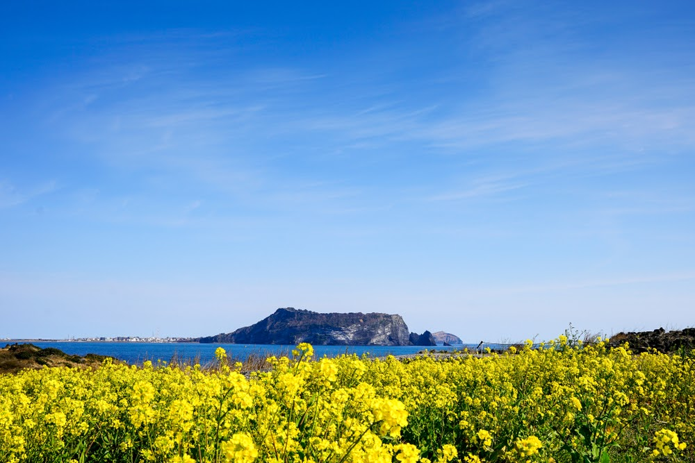 Things to do in Jeju Island: Your Guide to Korea's Hidden Island Getaway